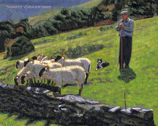 "Donald Curran - Work Zoom: ""Irish Shepherd"""