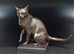 "Luna by tucker bailey Bronze ~ 13.5"" x 16.5"""
