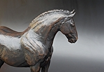 "Ira's Horse by tucker bailey Bronze ~ 16.5"" x 19.5"""