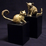 Bush Babies by tucker bailey Bronze ~  x