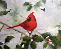 "Cardinal in Holly - oil on canvas 8 x 10"" by Christine Marx Oil ~ 8 inches x 10 inches"