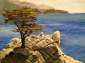 The Lone Cypress by Christine Marx Oil ~ 8 inches x 10 inches