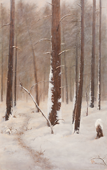 White Pines in Winter - Oil