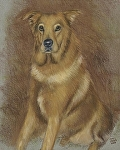 """My Favorite Dog (Mr. Dog)"" by Vince Ornato Jr. Pastel ~ 20 x 16"