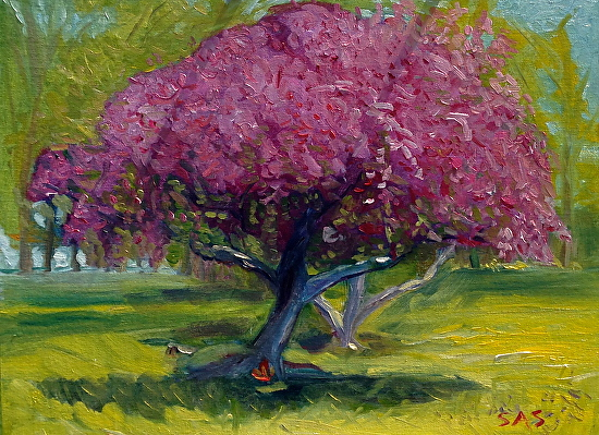 Spring Glories/ Edsel and Eleanor Ford House - Oil on Board