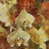 Yellow Orchids and Day Lilies