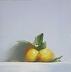Lemons by Neil Carroll