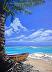 7 mile beach by Gigi Genovese  ~  x
