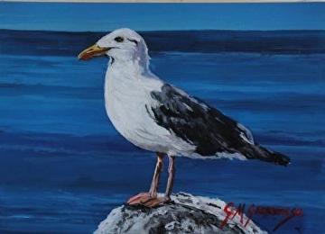 Herring gull by Gigi Genovese Acrylic ~ 5 x 7