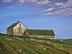 Spring at Hilltop Farm by Gigi Genovese Acrylic ~ 16 x 20