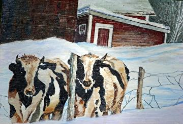 Cows on the run by Gigi Genovese Acrylic ~ 11 x 14