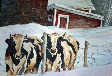 Cows on the run by Gigi Genovese Acrylic ~ 11 x 14
