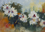 White Daisys by Coko Brown Oil ~ 6 x 8