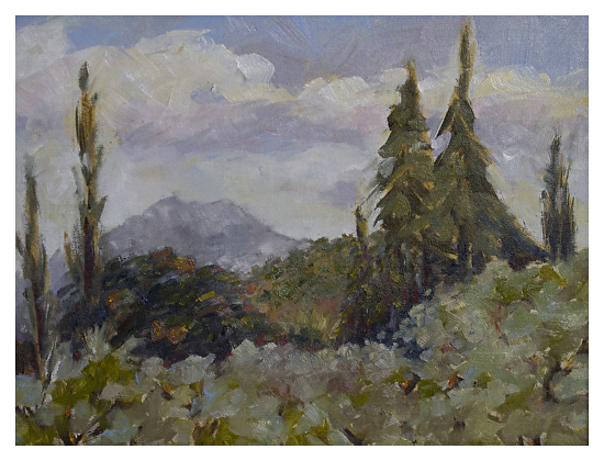 Cuyamaca Peak - Oil