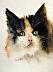 Kitten Snuggles by Lynda Nolte