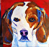 Scooby by Amity Perry Acrylic ~ 10 x 10