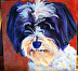 cooper by Amity Perry Acrylic ~ 10 x 10