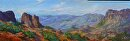 """West Texas by Ruth Meaders Oil ~ 12"""" x 36"""""""