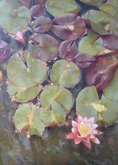 Lilly Pads - Oil