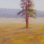 Norma Holmes - Land Escapes, A Solo Show, Black Butte Ranch