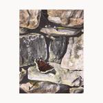Sue deLearie Adair - 88th Annual International Exhibition of Fine Art in Miniature