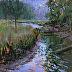 Bee creek at Sassafras by Joseph Gyurcsak