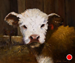 Little Bitty Bully by Christine Hooker Oil ~ 10 x 12