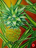 LIL MAUI PINE by LARRY RENSLOW Watercolor ~ 20 INCHES PLUS FRAME x 16 INCHES PLUS FRAME