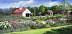 Musterfield Farm by Eileen Belanger
