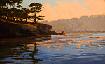"Point Lobos Reserve - Coal Chute Pt. by Mark Farina  ~ 30"" x 48"":"