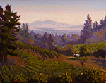 "Sonoma Mountian Vista by Mark Farina Oil ~ 16"" x 20"