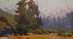 "Garland Park Summer by Mark Farina Oil ~ 7"" x 14"""