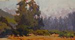 "Garland Park Summer by Mark Farina Oil ~ 7"" x 14"""