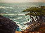 "Headlands Cypress - Pt Lobos by Mark Farina Oil ~ 12"" x 16"""