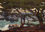 "Pacific Grove Cypress by Mark Farina Oil ~ 9 3/4"" x 13"""