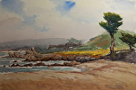 "View To North From Monastery Beach by Mark Farina Watercolor ~ 20"" x 24"""