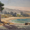 Monastery Beach Cypress