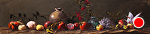 "Heirloom Apples & Seashells by Mark Farina Oil ~ 10"" x 40"""