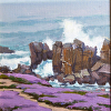 Purple Carpet & Kissing Rocks - Pacific Grove, CA