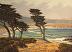 Monastery Beach Cypress & Sea by Mark Farina