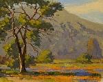 "Garland Park Spring - Carmel Valley, California by Mark Farina  ~ 11"" x 14"""