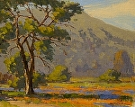 "Garland Park Spring - Carmel Valley, California by Mark Farina  ~ 11"" x 14"""