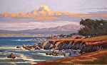 "Monterey Bay - Hopkins Point II by Mark Farina  ~ 30"" x 48"""