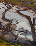 "Danncing Cypress ll - /study/   Pebble Beach by Mark Farina  ~ 14"" x 11"""