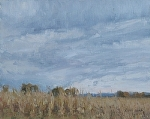 End of the Season - Field of Corn by Keith Bond Oil ~ 8 x 10