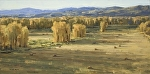 Late Season Hay by Keith Bond Oil ~ 12 x 24
