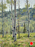 Wildflowers Among the Aspen by Keith Bond Oil ~ 12 x 9
