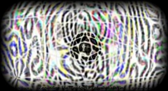 Expanding The Wanderer's Labyrinth of Nine (7/24/2011 10:16:46 AM) -
