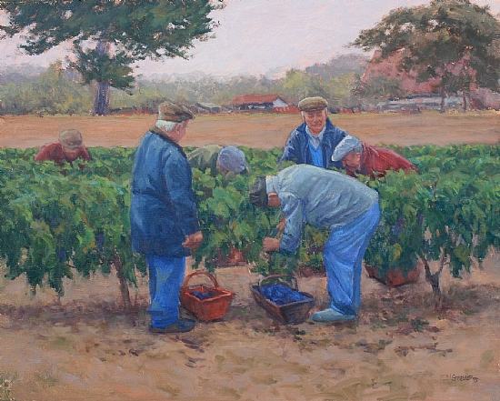 Harvesting the Grapes by Debra Joy Groesser Oil ~ 16 x 20