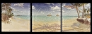 """High Tide""  Lanikai Triptych by Bill Braden Oil ~ (3) @ 3 feet x 3 feet"